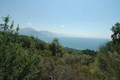 Bouwkavel op een heuvel (2)