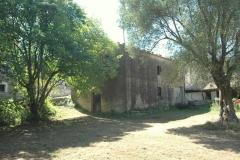 Bouwperceel met veel oude oliijbomen (4)