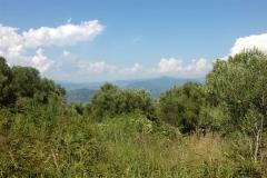 Fraaigelegen bouwperceel in Cilento