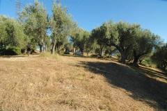 Groot bouwterrein , geschikt als camping in Zuid-Italë