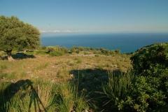 Cilento-adembenemend uitzicht op zee (3)