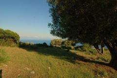Cilento-eeuwenoude landbouwgronden (4)