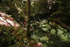 Cilento-wandelen door eeuwenoude bossen (2)