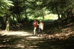 Cilento-wandelen door eeuwenoude bossen (6)