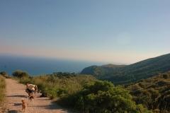 Cilento-wandelen in schitterende natuur (2)