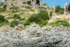 Een van de mooiste kusten van Italië (16)