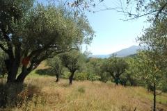 Bouwkavel met zeezicht in Cilento