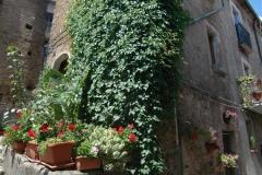 De Via Roma in San Giovaii a Piro (3)