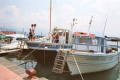 Capitano Tanino en Pino