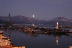 Scario by night (2)