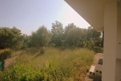 Uitzicht-op-de-tuin