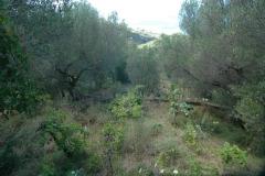 Lommerijke tuin van de villa