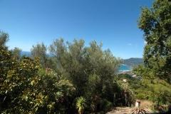 Schitterend uitzicht vanuit de villa in Cilento